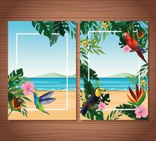 Carte vierge de l'été avec des oiseaux exotiques et des feuilles tropicales avec des fleurs vecteur