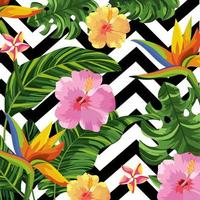 Tropical flowers on geometric background