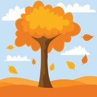 The Tree In Autumn Season