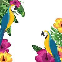 macaw parrot with flowers and leaves background