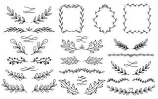 Insieme disegnato a mano dei divisori della natura vegetale. Collezione di elementi botanici. Elegante stile vintage.
