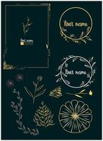 floral hand drawn frames and scroll elements