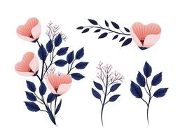 set exotic flowers plants with nature branches leaves