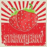 Strawberry Vintage Retro Signage  vector