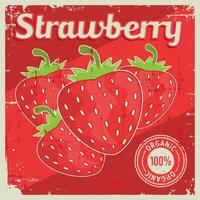 Strawberry Vintage Retro Signage  vector