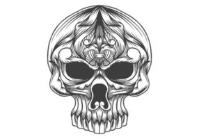 skull head decoration vector illustration