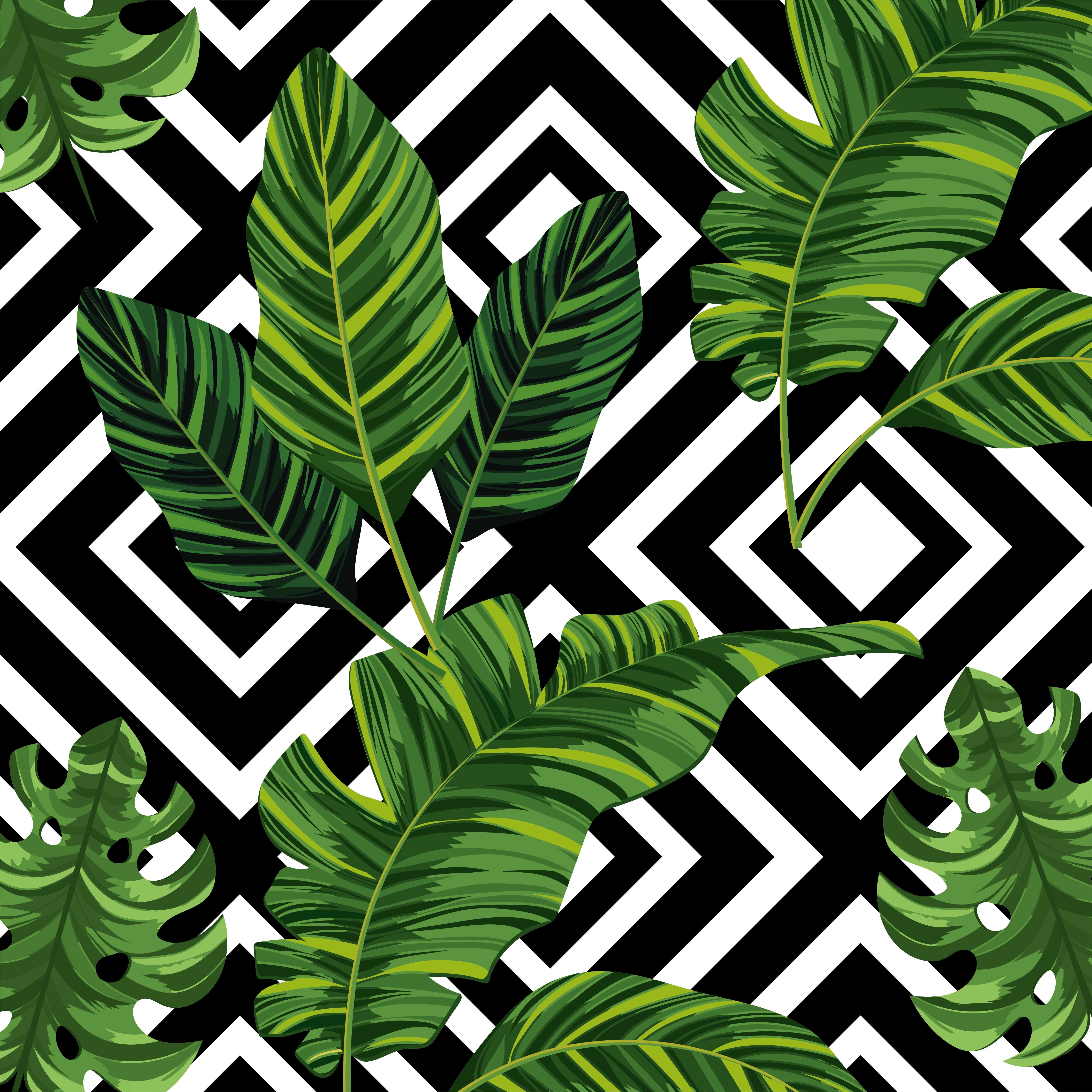 Tropical Leaves Plants And Figures Background Download Free Vectors Clipart Graphics Vector Art A 1x1 ratio file square 50cmx50cm or any combination. vecteezy