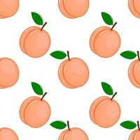 pink peaches seamless pattern vector