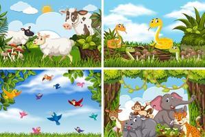 Set of various animals in nature scenes vector
