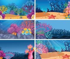 Conjunto de escenas en la naturaleza submarina. vector