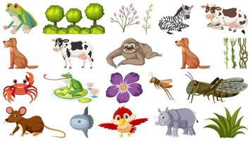 Set of different animals and plants