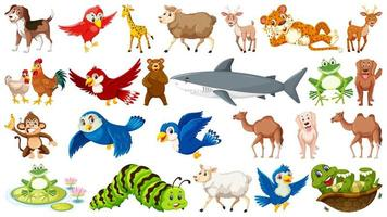 Ensemble de nombreux animaux sauvages