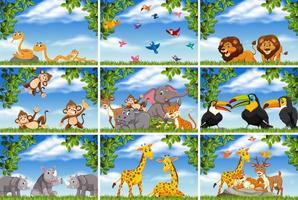 Animali della giungla nelle scene della natura