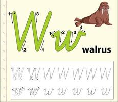 Letter W tracing alphabet worksheets vector
