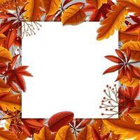 Concetto di confine di foglie d'autunno