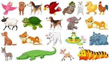 Conjunto de diferentes animales salvajes