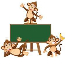 Modelo de quadro-negro com macaco