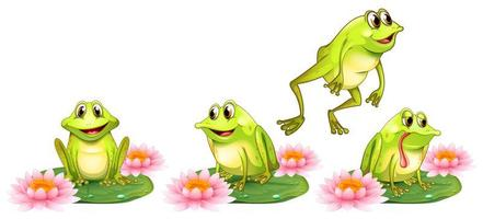 Four green frogs on water lily set