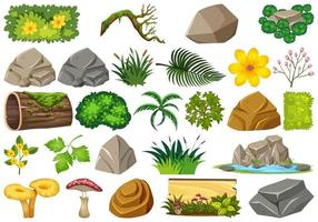Conjunto de elementos da natureza