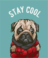 Stay Cool slogan with cartoon dog in red jacket vector