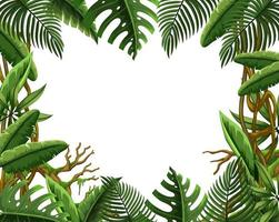 Blank jungle leave frame vector