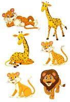 Set of jungle animal