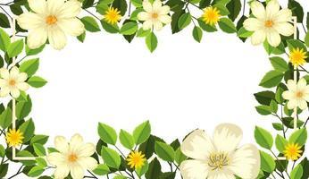 Tarjeta en blanco hermosa flor vector