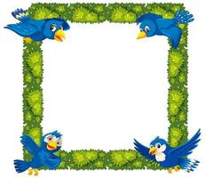 Plant and bird border vector