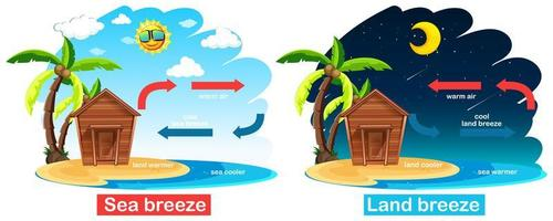 Diagram showing circulation of sea and land breeze