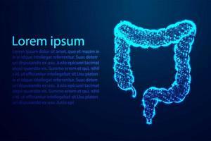 línea poligonal del intestino del colon vector