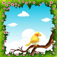 Yellow bird on tree branch frame  vector