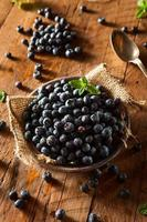 Fresh Raw Organic Blueberries