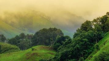 Morning mist from Nan province
