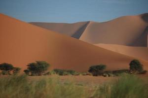 Die Wüste Sahara in Algerien