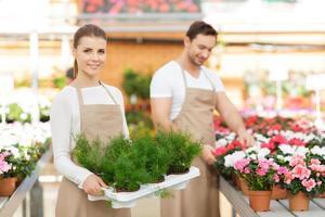floristas positivos trabajando juntos foto