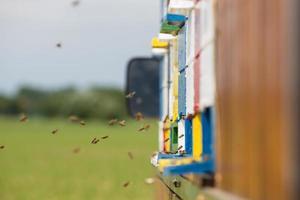 apicultura em um caminhão.