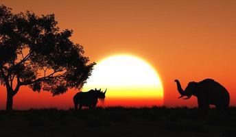 3D african landscape photo
