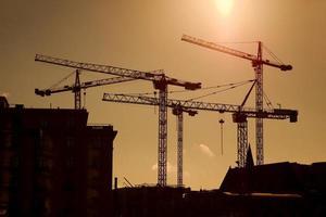 Cranes photo
