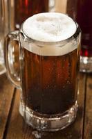 cerveza de raíz fría y refrescante foto