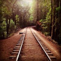 Train track photo