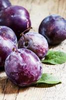 Large purple plum