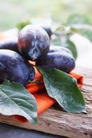 organic plum