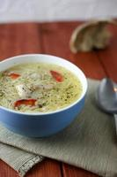 Chicken soup with noodle vertical