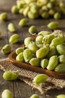 garbanzos verdes frescos orgánicos crudos