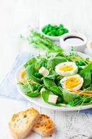 Spring salad photo