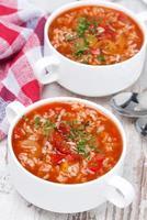 Sopa de tomate con arroz y verduras, vista superior