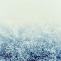 Winter iced background photo