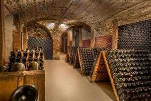 Wine cellar, a row of champagne bottles photo