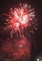fogos de artifício japoneses no inverno