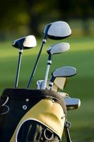 Five golf clubs in golfing bag on golf course